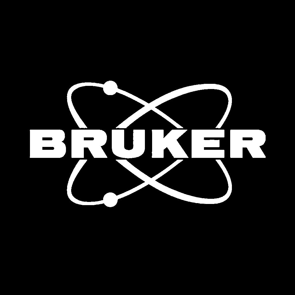 nl-logo-bruker